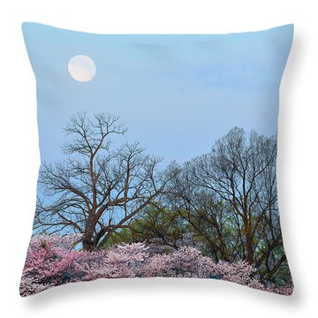 Spring Moon Throw Pillow by Mitch Cat