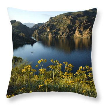 Spring Morning At The Lake Throw Pillow by Sue Cullumber