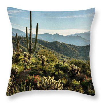 Throw Pillow featuring the photograph Spring Morning In The Sonoran  by Saija Lehtonen