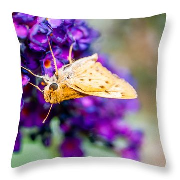 Spring Moth Throw Pillow