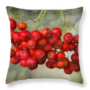 Spring Mountain Ash Berries  Throw Pillow