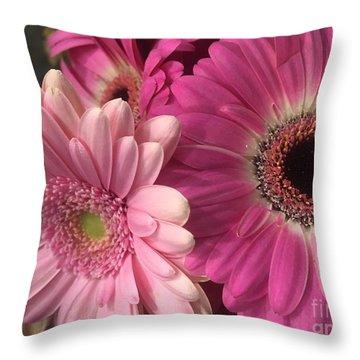 Spring N Winter Throw Pillow