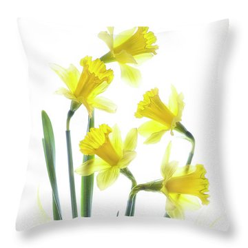 Spring Narcissus Throw Pillow by Jacky Parker