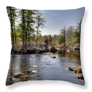 Throw Pillow featuring the photograph Spring Near Moose River Road by David Patterson