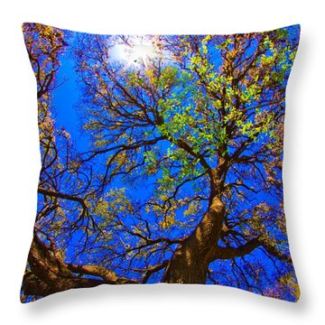 Spring Oak Throw Pillow