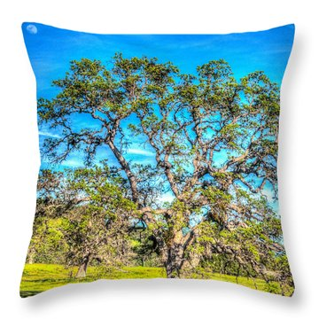 Spring Oak Moon Rise Throw Pillow