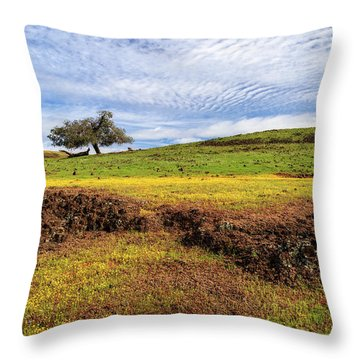 Throw Pillow featuring the photograph Spring On North Table Mountain by James Eddy
