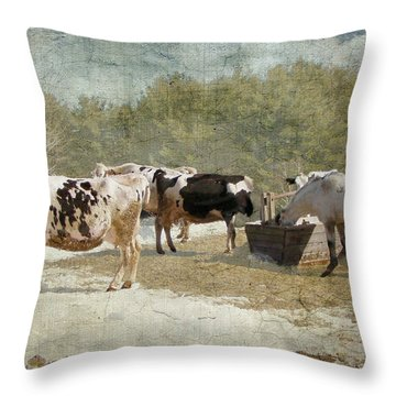 Spring On The Farm  Throw Pillow