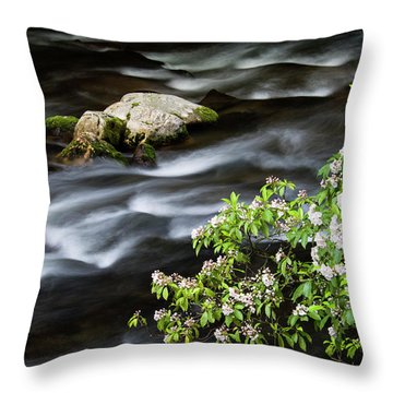 Throw Pillow featuring the photograph Spring On The Oconaluftee River - D009923 by Daniel Dempster
