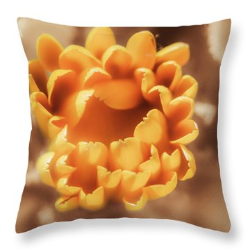 Spring Open Throw Pillow