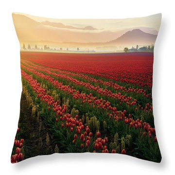 Spring Palette Throw Pillow