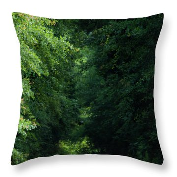 Throw Pillow featuring the photograph Spring Path Of Light by Shelby Young