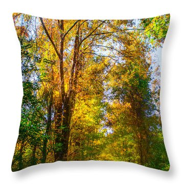 Spring Path Throw Pillow by Parker Cunningham