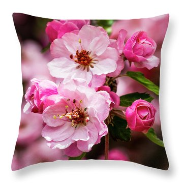 Spring Pink Throw Pillow by Teri Virbickis