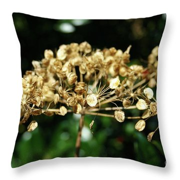 Spring Princess Became Queen Of Autumn Throw Pillow