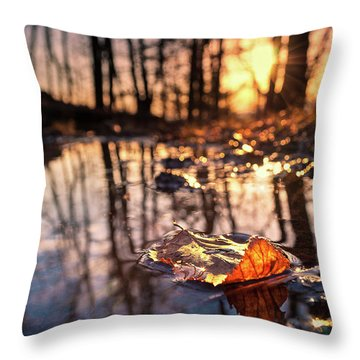 Spring Puddles Throw Pillow by Craig Szymanski