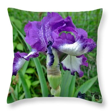 Spring Purple Iris Throw Pillow by Marsha Heiken