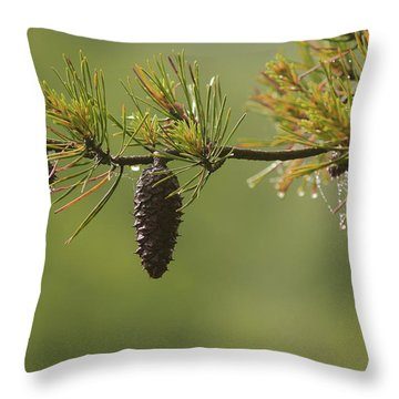 Spring Rain And Pinecone Throw Pillow