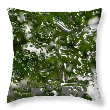 Spring Raindrops  On The Windowpane Throw Pillow by Patricia E Sundik