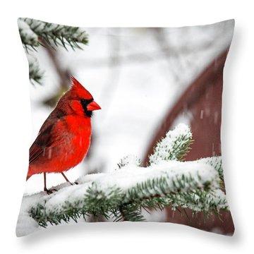 Spring Recess Throw Pillow