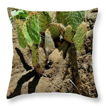 Spring Refreshment Throw Pillow