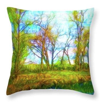 Spring River Rambling Throw Pillow