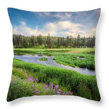 Spring River Valley Throw Pillow