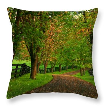 Spring Road Throw Pillow