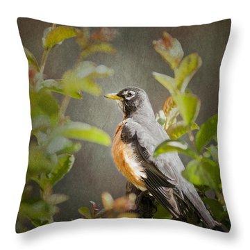 Spring Robin Throw Pillow