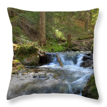 Spring Run Off Throw Pillow