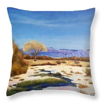 Spring Runoff Throw Pillow by Sherril Porter