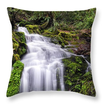 Spring Season Cascade Throw Pillow by Madonna Martin