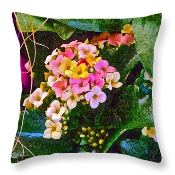 Spring Show 12 Throw Pillow by Janis Nussbaum Senungetuk