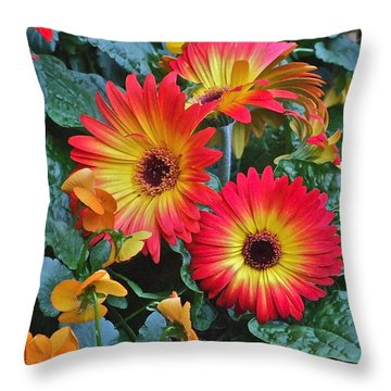 Spring Show 14 Gerbera Daisy 1 Throw Pillow