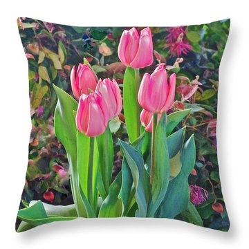 Spring Show 14 Pink Tulips  Throw Pillow
