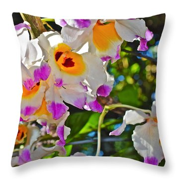 Spring Show 15 Brazilian Orchid Throw Pillow