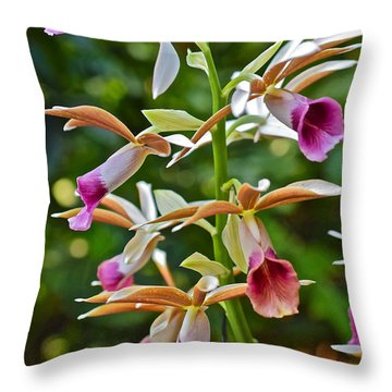 Spring Show 15 Nun's Orchid 1 Throw Pillow by Janis Nussbaum Senungetuk