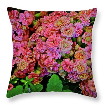 Throw Pillow featuring the photograph Spring Show 18 Double Pink Kalanchoe by Janis Nussbaum Senungetuk