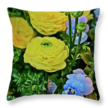 Throw Pillow featuring the photograph Spring Show 18 Persian Buttercup With Horned Viola by Janis Nussbaum Senungetuk