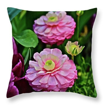 Throw Pillow featuring the photograph Spring Show 18 Pink Ranunculus 1 by Janis Nussbaum Senungetuk