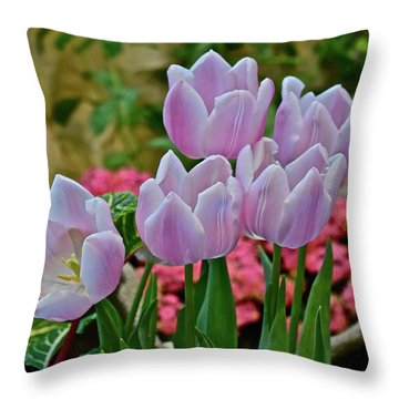Throw Pillow featuring the photograph Spring Show 18 Pink Tulips And Montego Rose Snapdragons by Janis Nussbaum Senungetuk