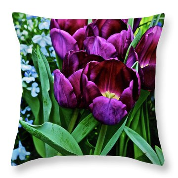 Throw Pillow featuring the photograph Spring Show 18 Red Violet Tulips And Lobelia by Janis Nussbaum Senungetuk