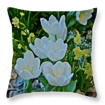 Throw Pillow featuring the photograph Spring Show 18 White Tulips And Minnow Daffodils by Janis Nussbaum Senungetuk