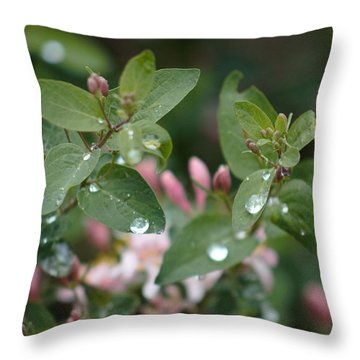 Spring Showers 5 Throw Pillow by Antonio Romero