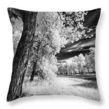 Throw Pillow featuring the photograph Spring Sky by Dan Jurak