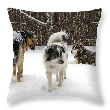Spring Snow #2 Throw Pillow by Rhonda McDougall