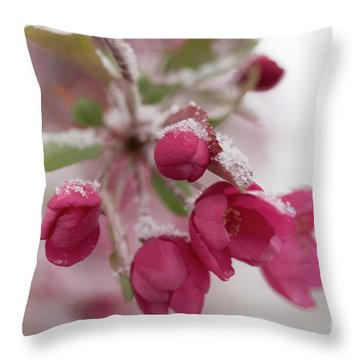Throw Pillow featuring the photograph Spring Snow by Ana V Ramirez
