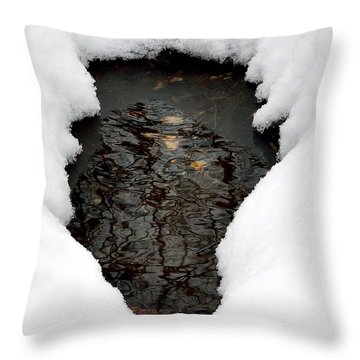Throw Pillow featuring the photograph Spring Snow by EDi by Darlene