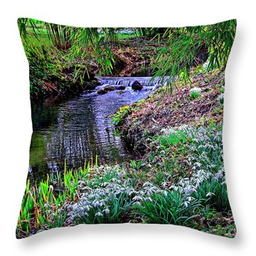 Spring Snowdrops By Stream Throw Pillow