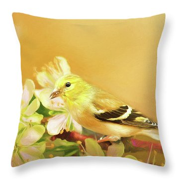 Throw Pillow featuring the photograph Spring Song Bird by Darren Fisher